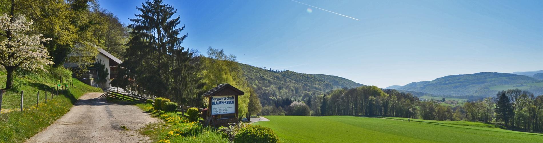 Freistehendes 9-Zi'- Familienhaus mit Bergrestaurant, an einzigartiger Lage in Blauen