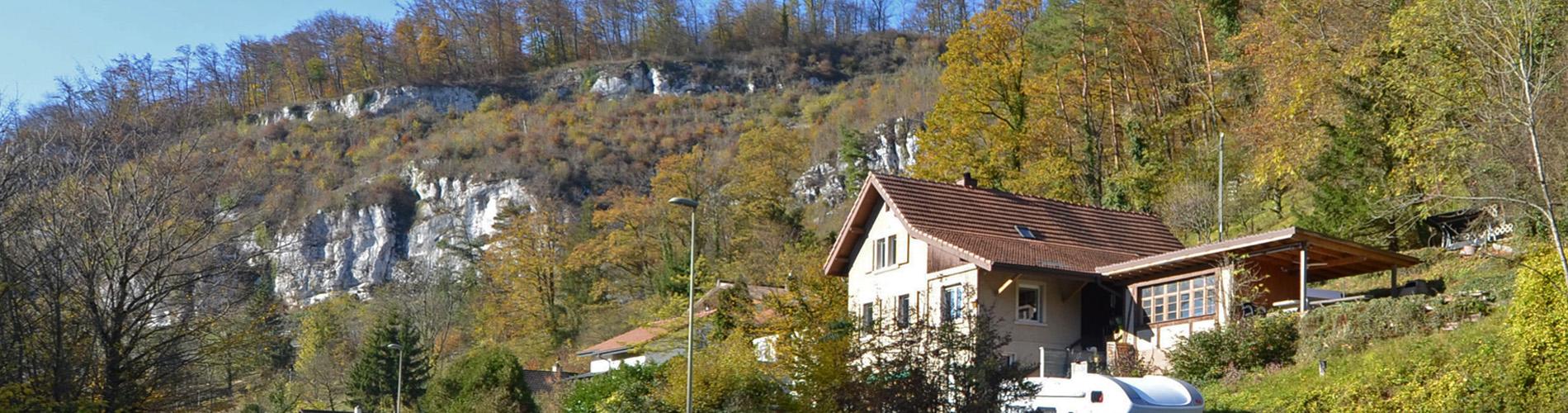 Freistehendes Einfamilienhaus mit eigenem Wald