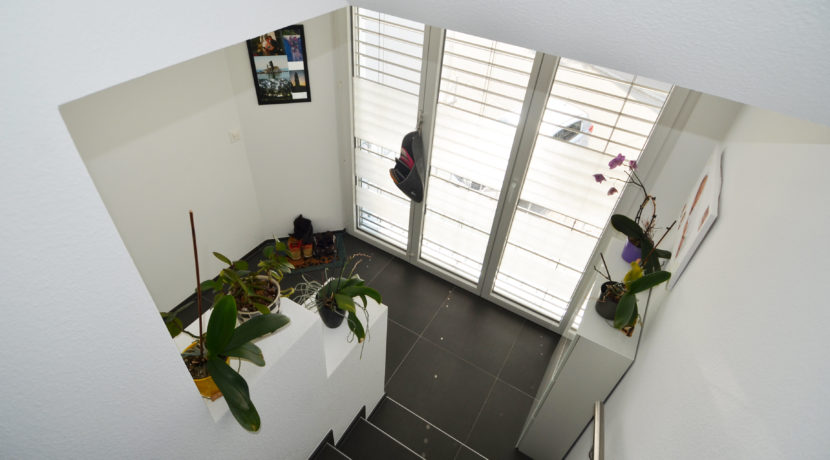 Treppe-Vorplatz-2